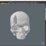Importing Skull into MODO and centering it.