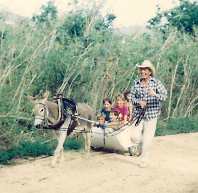 Donkey cart ride.