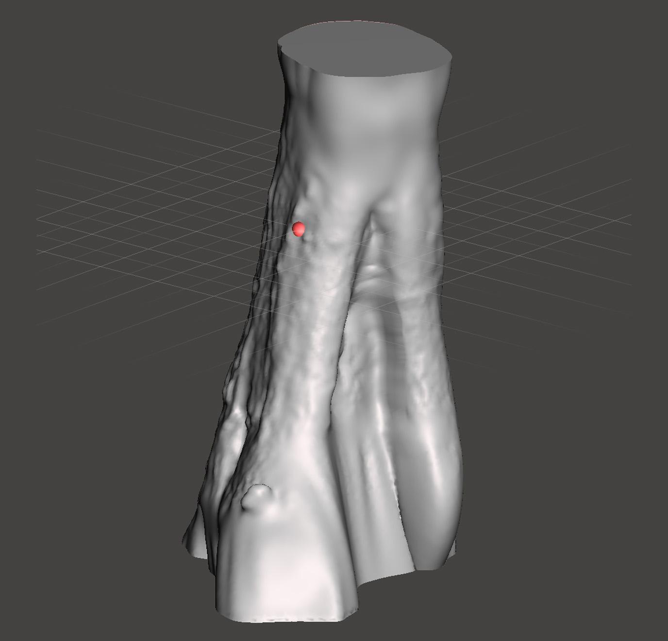 Solid Tree Leg